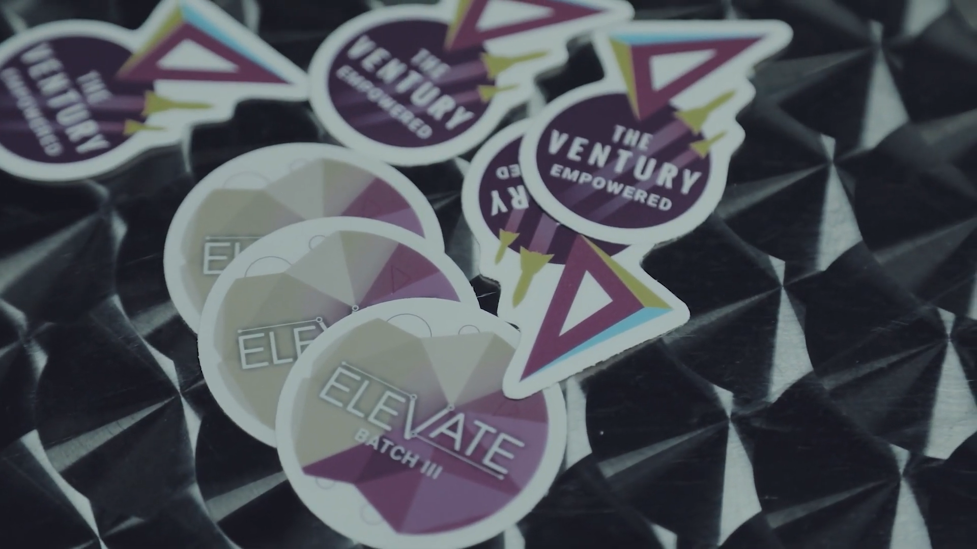 Elevate Accelerator Program Video